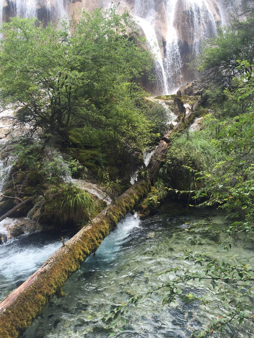 waterfall, flowing water, water, nature, scenics, river, beauty in nature, motion, day, tranquil scene, no people, outdoors, forest, tree