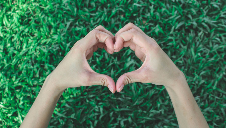 Directly above shot of hand holding heart shaped grass