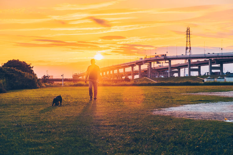 Man walking with dog on grassy field against orange sky