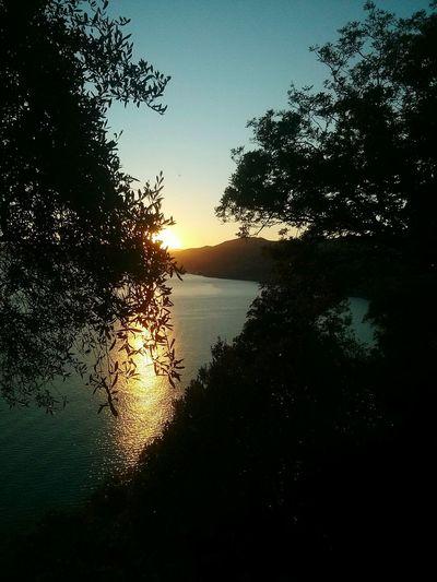 Atardecer Tramonto Liguria Camogli Sea View