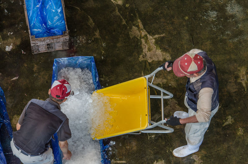 High angle view of people packing ice in plastic bag