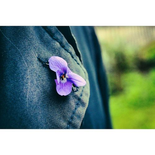 Just a detail.. Jasonissimo & a Violet [ PadovaRazionalista behindthescenes TBT  ] Instatellers Ita_details Ig_Italy minimal macro