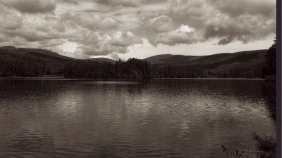 Cooper Lake/ Woodstock NY Blackandwhite Photography Bwlandscape Lake Trees Sky And Clouds Upstate New York Woodstock