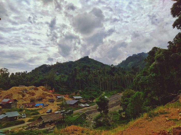 green and gold EyeEmNewHere Jungle Village EyeEm Best Shots EyeEm Selects No People An Eye For Travel