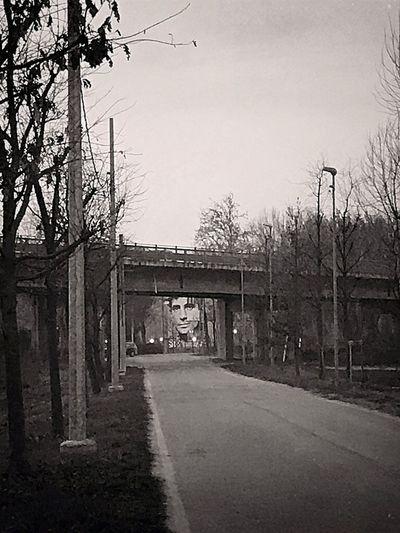 Jack Kerouac...under the bridge! jJack KerouacoOn The RoadbBridge On River PobBlackandwhitebBlack And WhiteBBlack & WhitebBiancoenerobBianco E NerocContrastSShadows & LightssStreet PhotographysStreetphotographymMural ArtMMurals