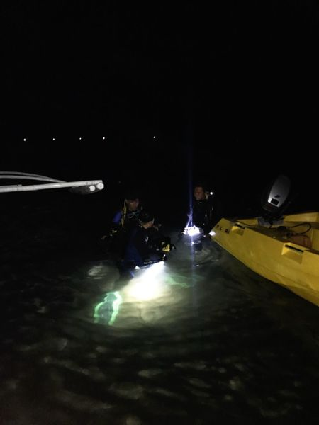 Preparing for the night dive Night Dive Dive Night Real People Illuminated Group Of People People Men Lifestyles Leisure Activity