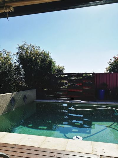 Water Swimming Pool Sport Sunlight Tree Outdoors Day No People Sky Blue Pool Angel