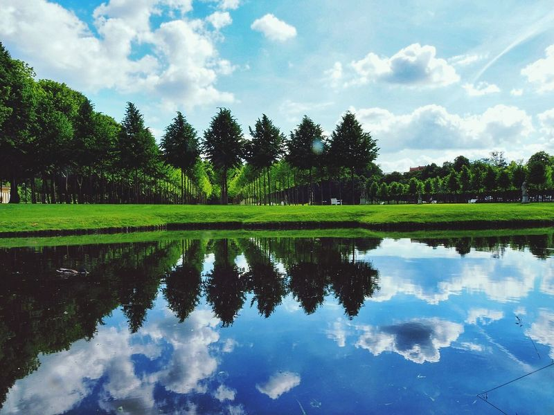 Schwerin Mecklenburg-Vorpommern Landscape Germany Relaxing MomentsReflection Magical Moments Magical Places Photography Photooftheday Bestview Water Cloud - Sky Citylive