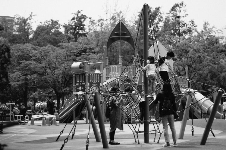 People at playground against trees
