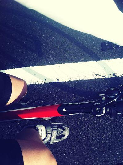 土佐センチュリーライド Cycling Enjoying Life