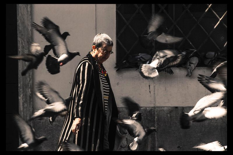 People And Places Day Italy Face Architecture Canon650d Canon_official Canonphotography Faces Of EyeEm Building Exterior Vibrant Color Human Representation Canonesia Lazio Rome Piazza Navona Pigeon Pigeons Pigeon Bird  Animals People Feeding  Feeding The Birds Feeding Animals Capital City