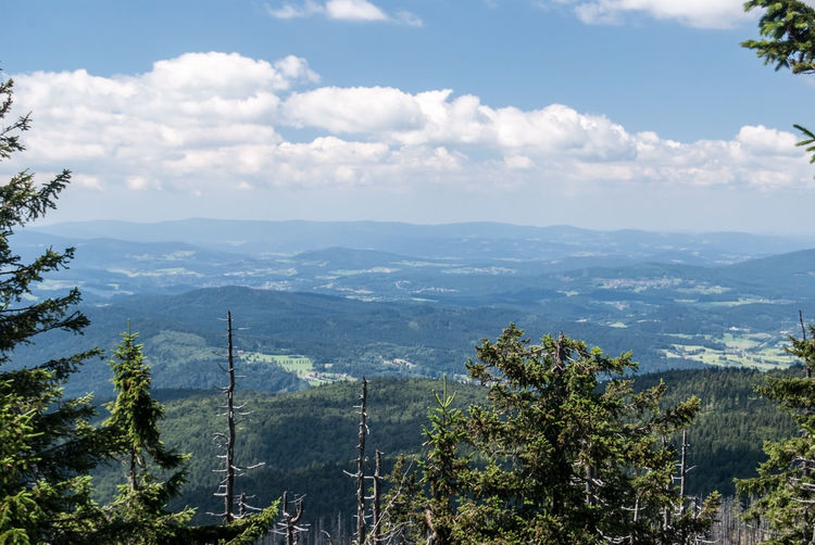 view from Grosser Rachel hill in Bayerischer Wald mountains in Germany Bavaria Grosser Rachel Bavarian Forest Bayerischer Wald Blue Sky With Clouds Cloud - Sky Environment Germany Landscape Mountain Mountain Range Nature No People Non-urban Scene Outdoors Scenics - Nature Sky Tree