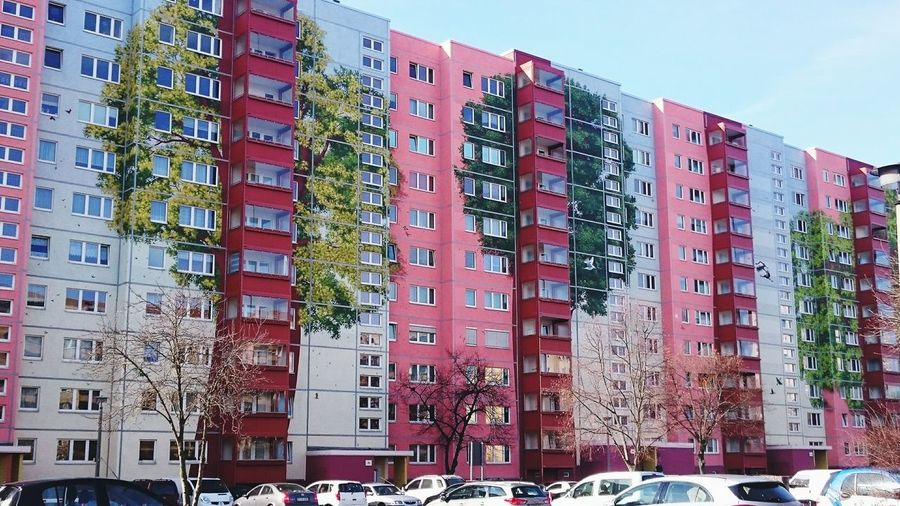 Tree_collection  Make World Beautiful Paint The World Architecture