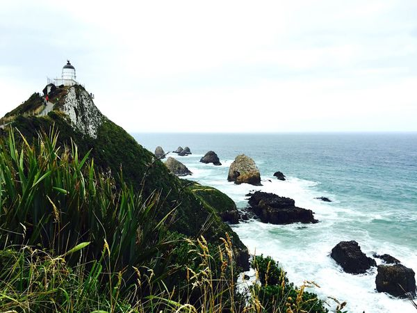 The Nugget Point Lighthouse Beauty In Nature EyeEm Best Shots EyeEm Nature Lover EyeEmBestPics New Zealand Beauty South Island New Zealand New Zealand Scenery EyeEmNewHere Travel Lighthouse Nugget Point Lighthouse Sea Sky Horizon Over Water Eyeemphotography