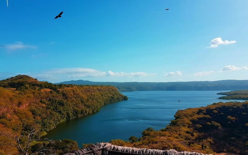 Blue Scenics Bird Water Outdoors No People Sky Nature Animals In The Wild Panoramic Volcano Landscape Tree Green Skyline Nicaragua Trees Vacations Joy Mountains Lake