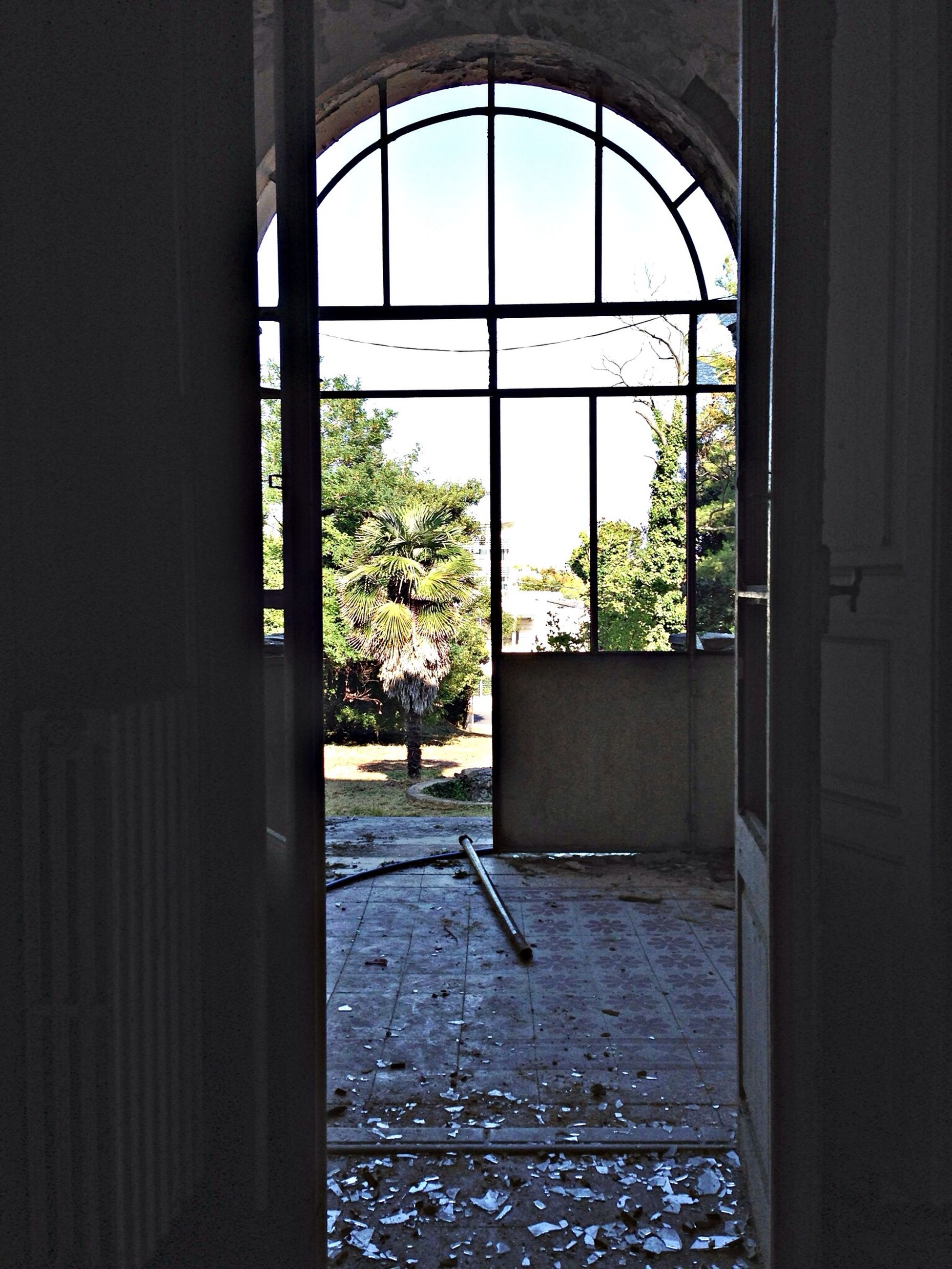 window, indoors, architecture, built structure, door, glass - material, tree, house, transparent, open, closed, arch, day, entrance, building exterior, home interior, sunlight, no people, plant, absence