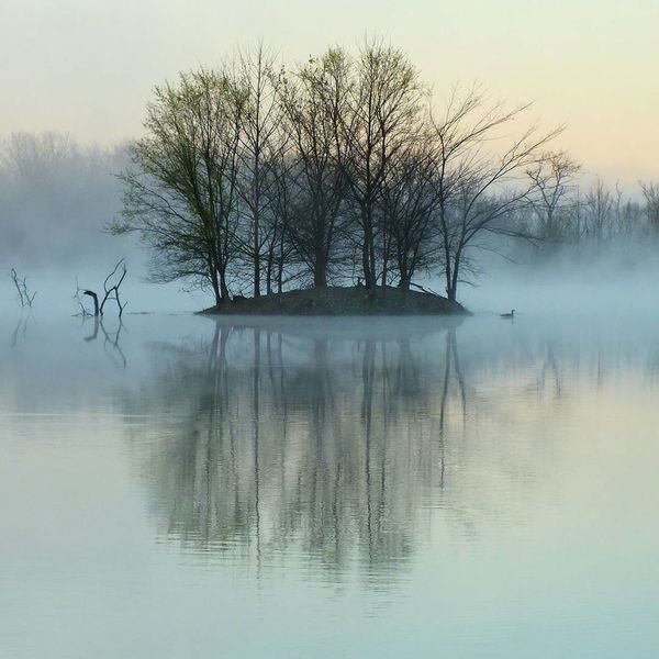Reflection Tree Nature Fog Lake Water Tranquility No People Sky Outdoors Landscape Beauty In Nature Scenics Outdoors Photograpghy  Fujifilmhs35exr Nature Photography FujifilmFinePix EyeEm Best Shots - Nature Eyeemphotography EyeEm Gallery Reflection Lake EyeEmNewHere EyeEm Best Shots Beauty In Nature