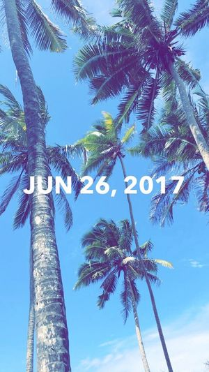 Summer lovin' 🌴💘