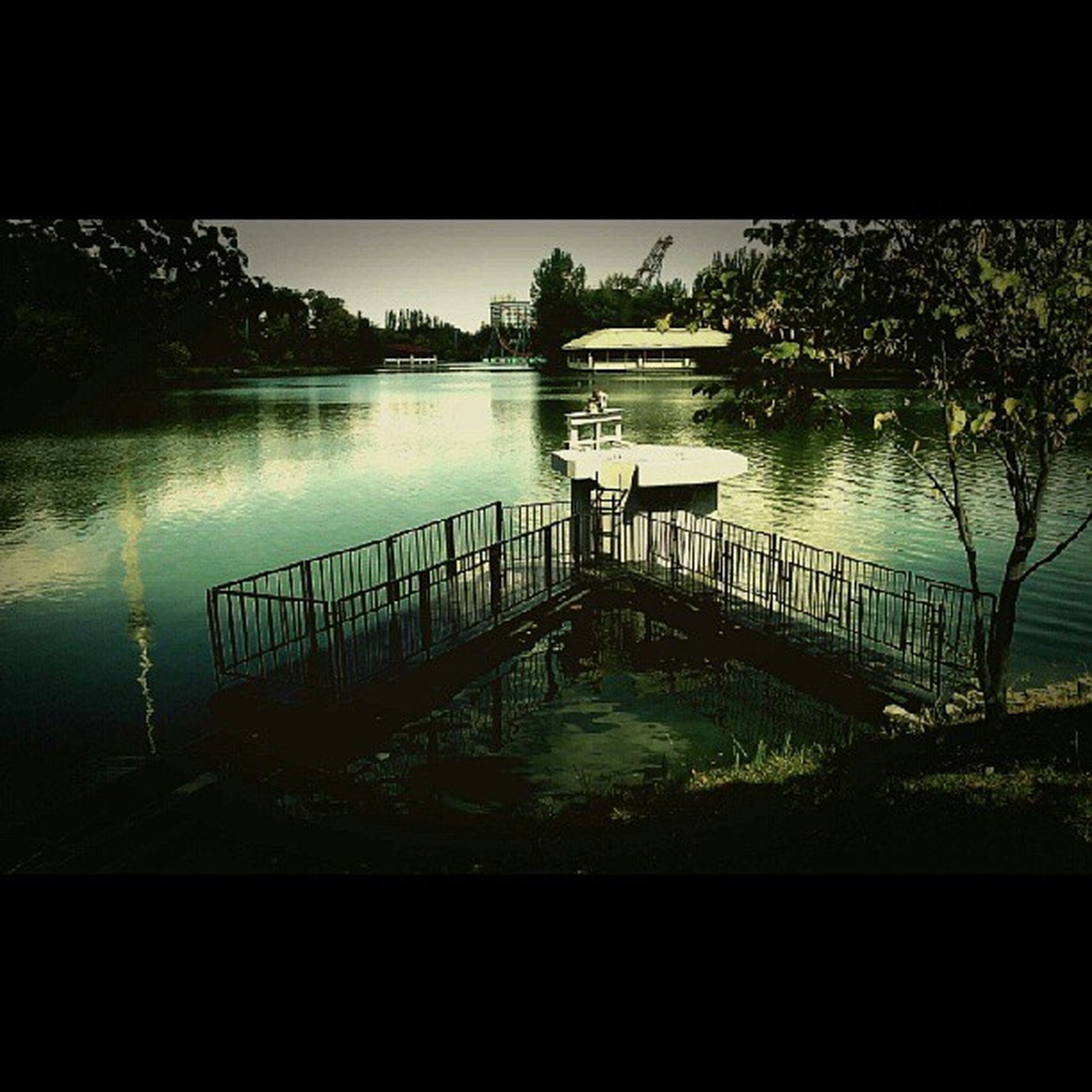 water, tree, lake, tranquility, reflection, tranquil scene, railing, nature, beauty in nature, scenics, river, growth, auto post production filter, idyllic, pier, silhouette, plant, no people, day, outdoors