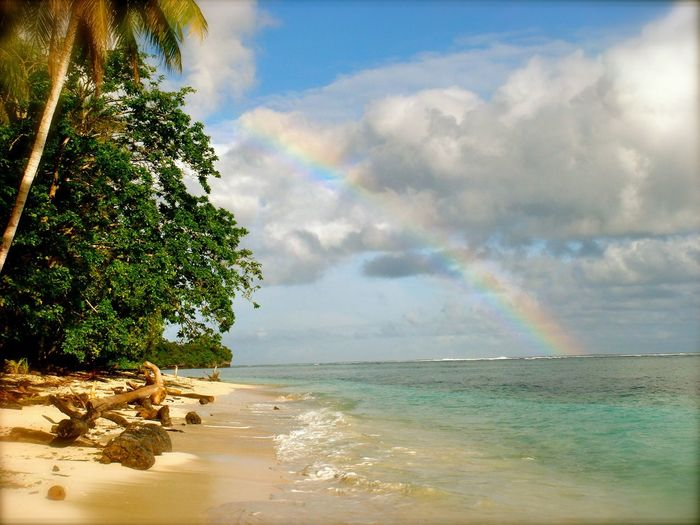 EyeEmNewHere Beach Beauty In Nature Cloud - Sky Day Horizon Over Water Nature No People Outdoors Rainbow Scenics Sea Sky Tranquil Scene Tranquility Tree Water