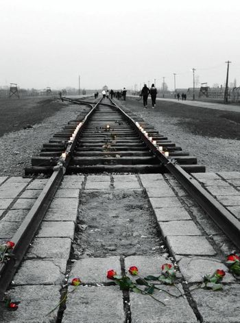 Remember not to let happen it again... Krakow,Poland Outdoors Railroad Track Death Camp Railway Track Cold Neveragain PrayFor Roses Photography Red Roses🌹 Blackandwhite