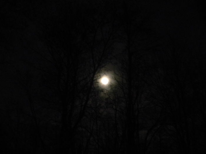 Astronomy Beauty In Nature Bright Night Bright Night Skies Clouds And Sky Dark Full Moon Glow Haunted Illuminated Moon Moon Nature Night Nighttime No People Outdoors Sky Supermoon