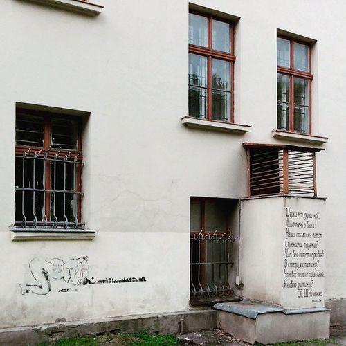 Lviv Streetart Wallcantalk Windows