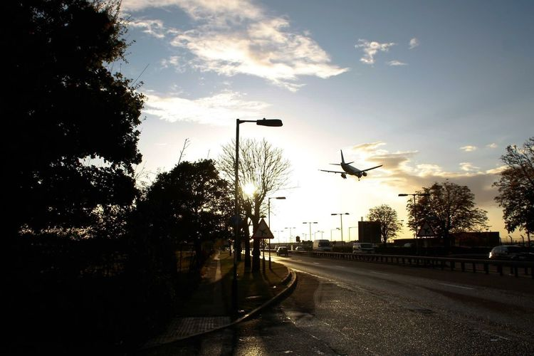 Tree Silhouette Transportation No People Road Sky Street Light Growth Architecture Outdoors Day Technology Nature City Plane Airplane Airport Flying