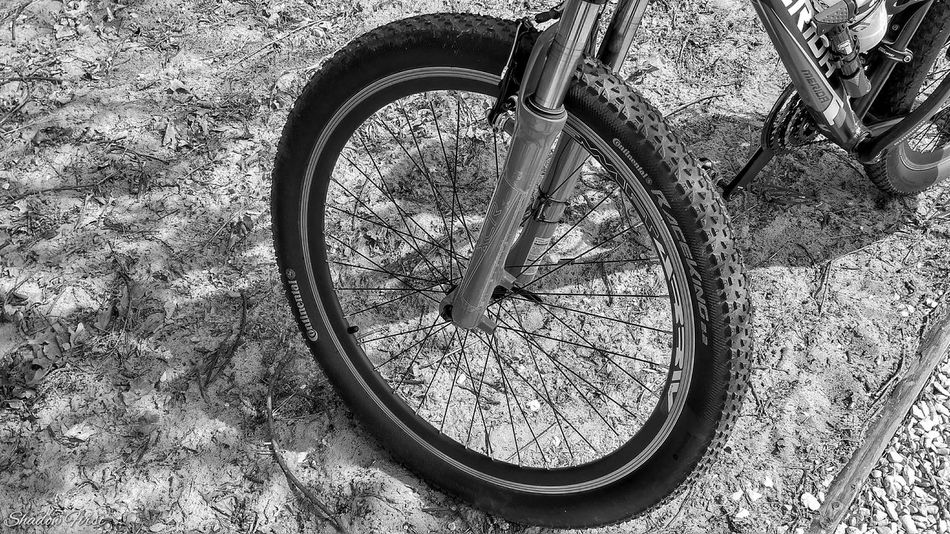 My Hobby 😁 Bicycle Adventuring Bicycle Trip Enjoying Life EyeEm Black&white! B&w From My Point Of View Relaxing Mobilephotography Xiaomi R3 Photo