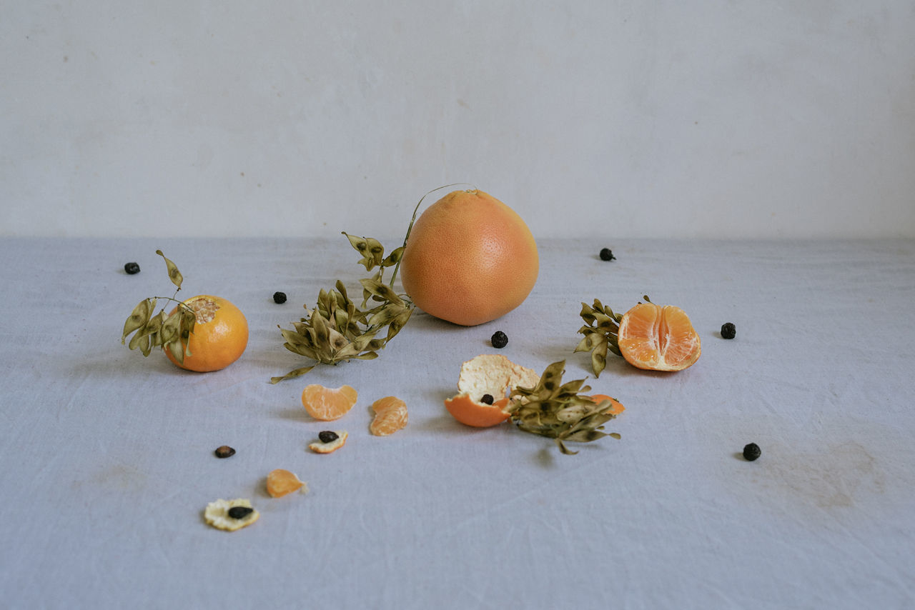 HIGH ANGLE VIEW OF FRUITS ON TABLE AGAINST WHITE BACKGROUND