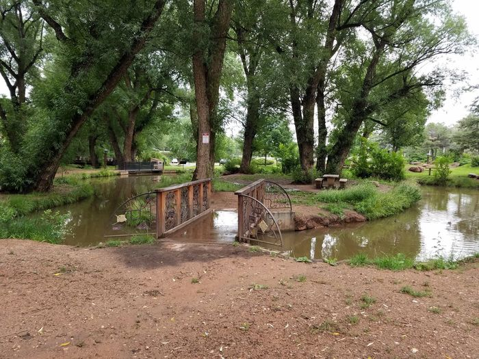 Duck Pond Outdoors Trees Picnic Area