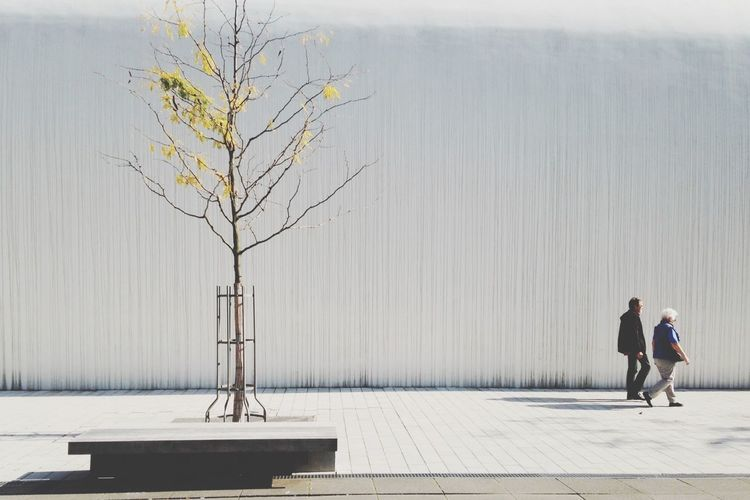 Streetphotography people Tree White