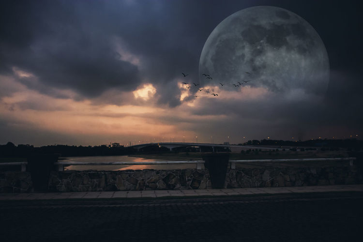Beauty In Nature Bird Cloud - Sky Flying Moon Nature Night No People Outdoors Scenics Sea Sky Sunset Water