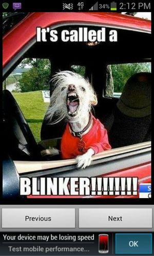 Me When I Drive