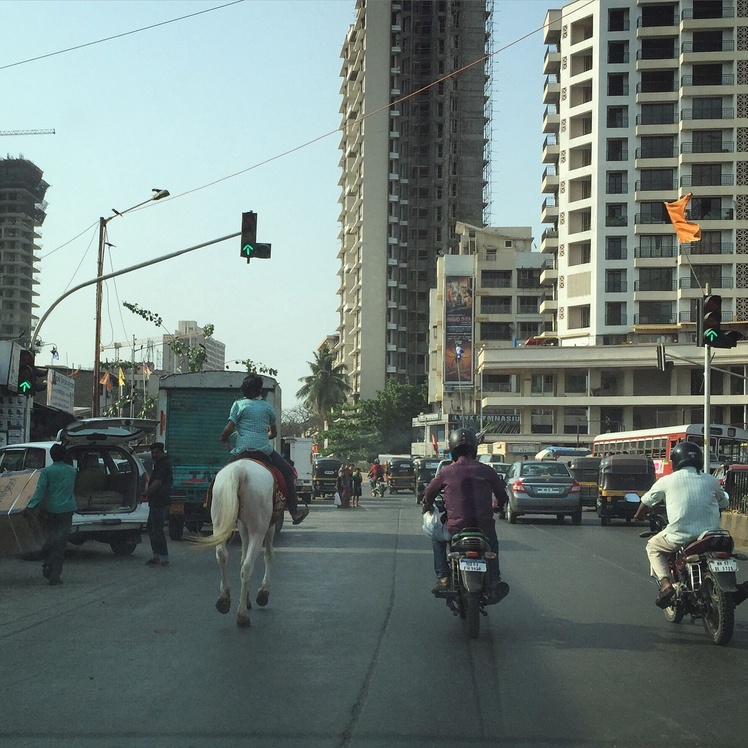 domestic animals, mammal, transportation, one animal, mode of transport, building exterior, city, real people, built structure, land vehicle, pets, sky, outdoors, architecture, day, one person, horse cart, men, people