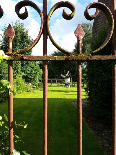 Hanging Out Taking Photos Check This Out Ironwork  Irongate Landscape Garden Garden Windmill.  Sunny Day Beatiful View Garden View Through The Gate Lanaken Belgium. Belgique. Belgie. Belgien. Etc. Showcase July Home Is Where The Art Is
