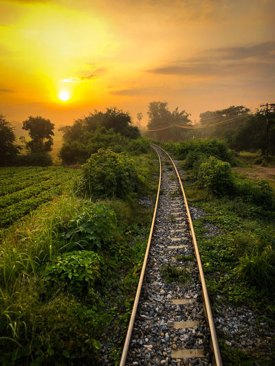 Railroad track amidst trees against sky during sunset