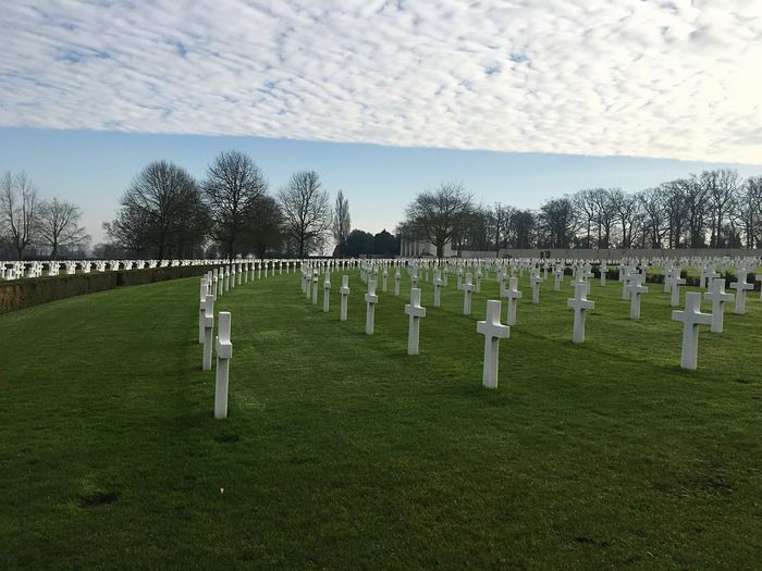 Cemetery Tombstone Memorial Tree The Past In A Row Sky War Memorial Cross Grass History No People Outdoors Bare Tree Day