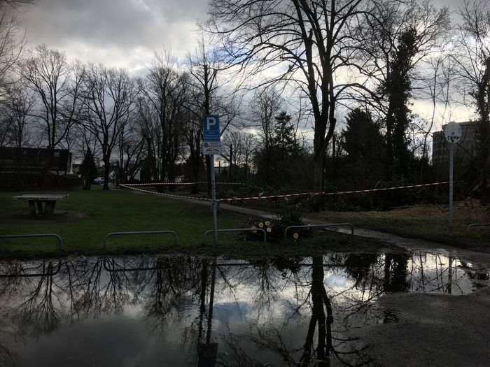 Pfützenspiegelung Bare Tree Tree Water Sky Reflection Cloud - Sky No People Tranquility Grass Branch Architecture Building Exterior Beauty In Nature Nature Outdoors Flood Day