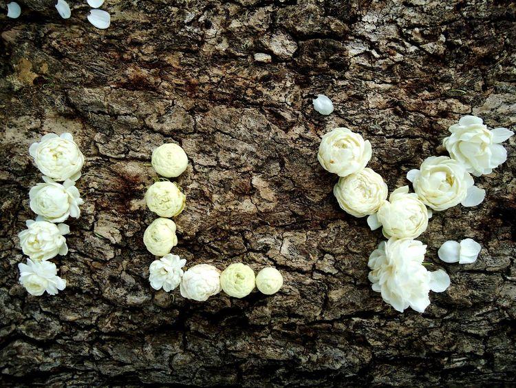 Jasmine instead of love. Beautiful Close-up Flower Flowers Fragrance Of Flowers Heart ❤ Jasmin Jasmine Jasmine Flower Landscape Love No People