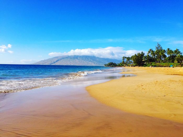 Maui beach in the afternoon sun Blue Kihei Volcano Hawaiishots USA Hawaiian Hawaii Life Tropical Tree Tropical Climate Copy Space Open Space Mountain Range Blue Sky And Clouds Sandy Beach Afternoon Light Hawaii Life Maui Hawaii Hawaii Maui Beach Land Sky Sea Beauty In Nature Tree No People Plant Outdoors Scenics - Nature Tranquility