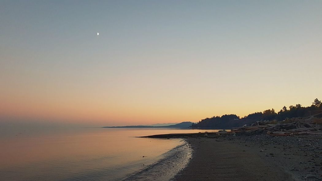 Twilight EyeEm Selects Water Sea Clear Sky Sunset Beach Moon Sky Horizon Over Water Landscape Low Tide Tide Seascape Coastline Ocean Coastal Feature Rocky Coastline Coast
