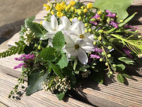 久しぶりのお庭で、花摘み。主に草花。 Flower Picking 草花