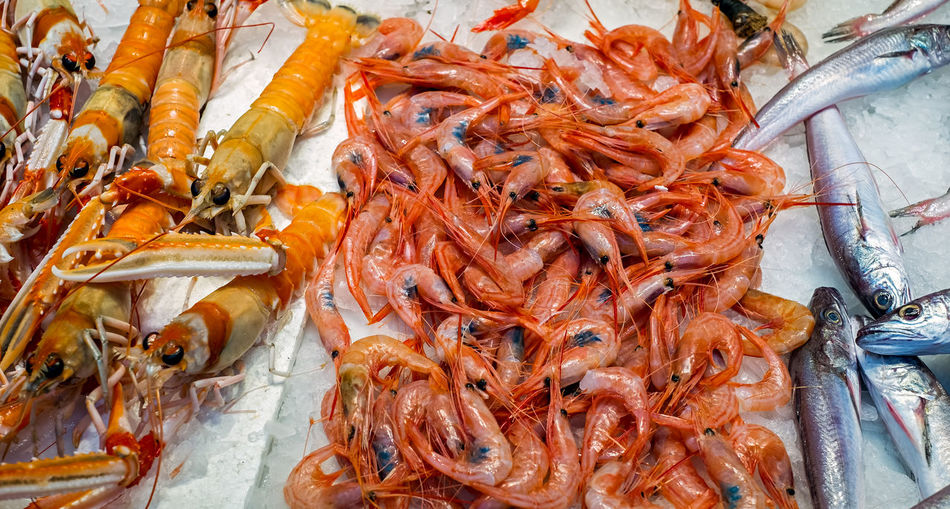 High angle view of prawns in market