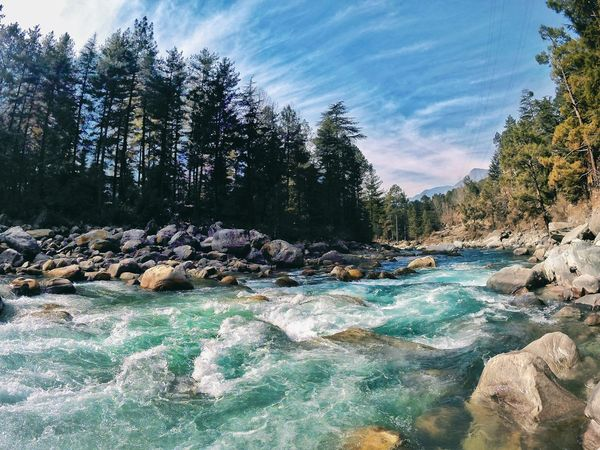 Bewildering Parvati River 💯😍😱 Winter Trees Himalayas Himachal Pradesh, India Photography Travel Destinations Tree Mountain Kasol Parvativalley Gopro River Rocks Rocks And Water Beautiful Nature Solo Travel Wanderlust Scenery Collection Wallpaper Beautiful Scenery Frame View Colours Colours Of Nature Nature Natureporn Moments Capture The Moment Clouds River