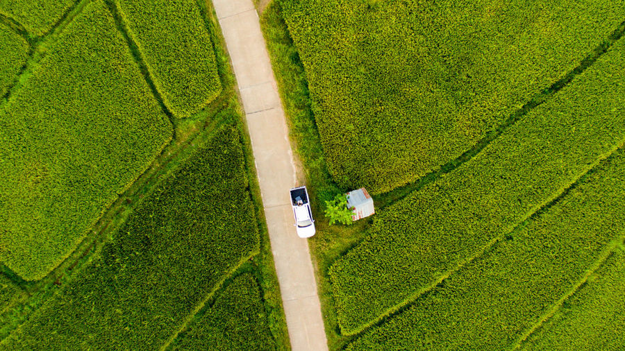 High Angle View Of Working In Agricultural Field