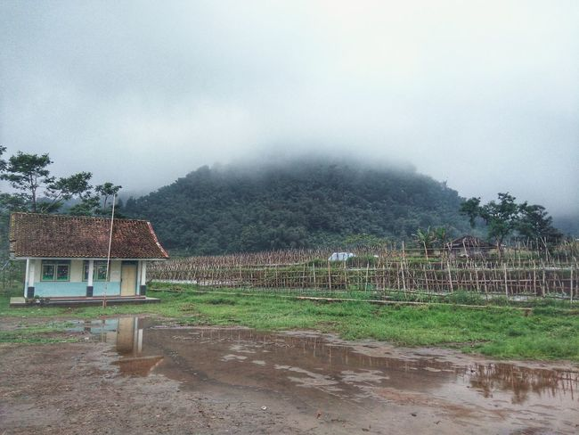 Elementary School Morning After The Rain . Landscape Nature Hill Mist at Palasari Ciater
