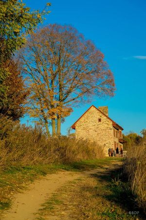 Architecture Building Exterior Blue Built Structure Tree Grass Travel Destinations Clear Sky Place Of Worship Tranquility Outdoors No People Sky Nature Day Beauty In Nature Mountain Fort Cultures Medieval LongwoodGardens Autumn Colors Autunn Colours Meadow Homestead