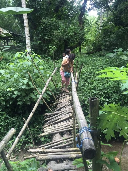 Asian  Mother And Son Bamboo - Material Bridge Lifestyles Outdoors People Wood - Material
