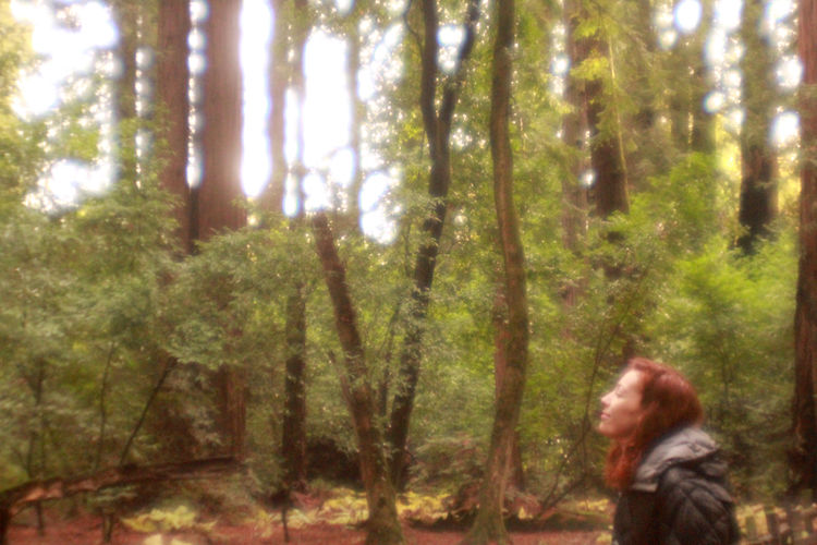 Afternoon California California Redwoods Dreaming Dreamy Forest Golden Hour Green Nature Northern California Plastic Lens Red Red Hair Redwoods Trees Woman